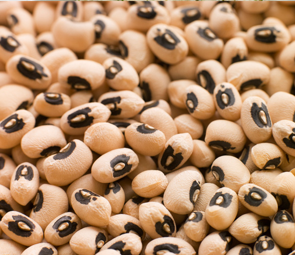 Black Eyed Peas Northern Kittitas County Tribune