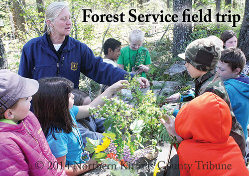 HEADLINES for the Week of May 15, 2015-Northern Kittitas County Tribune